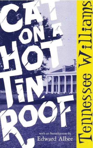 cat_on_a_hot_tin_roof
