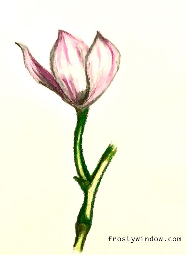flowerart_frostywindow copy.jpg
